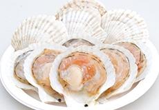 北海道産殻付きホタテ(醤油・バター付)