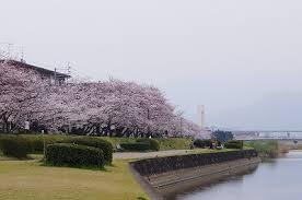 室見川河畔公園