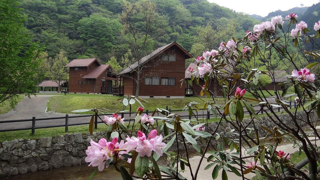 グリーンピア那珂川 キャンプ場