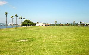 国営海の中道海浜公園 デイキャンプ場